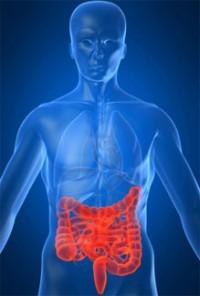 причины боли кишечника